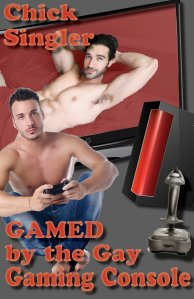gamed by the gay gaming console